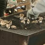 浅口市寄島 第33回よりしま海と魚の祭典