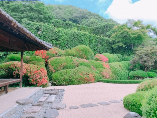 岡山県高梁市 頼久寺へサツキの咲く季節の庭園を見に行こう!春の青梅波は素晴らしい